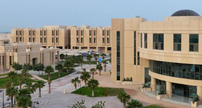تخصصات جامعة الإمام عبدالرحمن بن فيصل   سواح هوست
