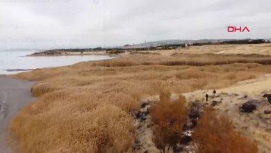 صورة انحسار كبير في مياه بحيرة وان وهذا ما ظهر مكان المياه