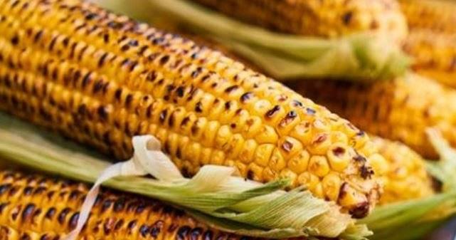 تفسير حلم رؤية الذرة أو أكل الذرة في المنام لابن سيرين سواح هوست