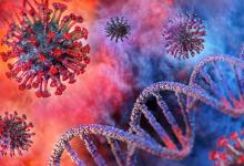 صورة دراسة: تحور فيروس كورونا لا يسرع من وتيرة انتشاره