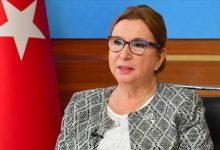 """صورة وزيرة تركية: واثقة بتحقيق أهداف """"البرنامج الاقتصادي الجديد"""""""