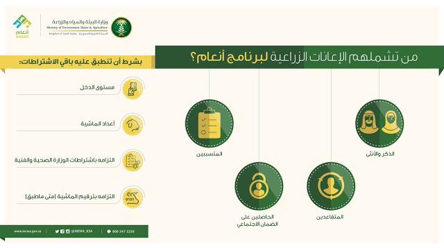 رقم دعم المواشي وطرق التواصل مع برنامج دعم المواشي سواح هوست