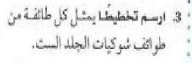 صورة رباعي يدعم سلة الفتح – صحيفة سبورت السعودية