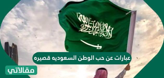 عبارات عن حب الوطن السعوديه قصيره سواح هوست