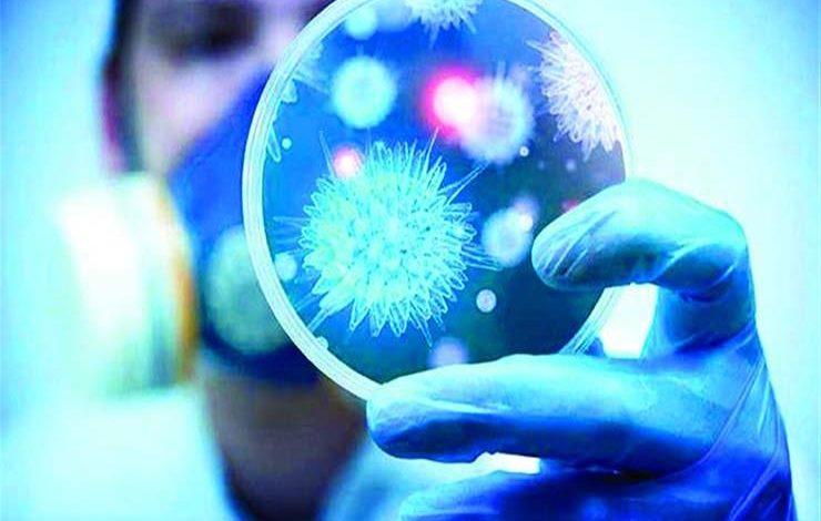 Çində elmə məlum olmayan qədim viruslar aşkarlanıb